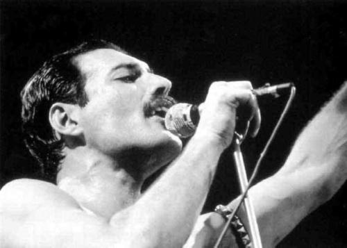 Se estivesse vivo, Freddie Mercury faria 64 anos neste domingo (5)